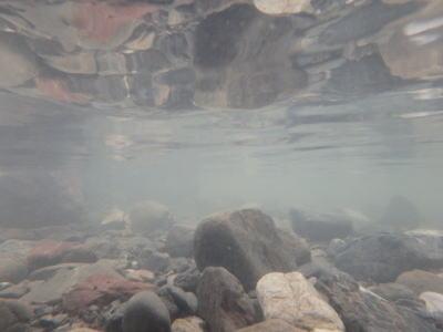 川遊びできる埼玉県の河原7選と必要なもの